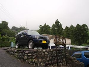 P7068833